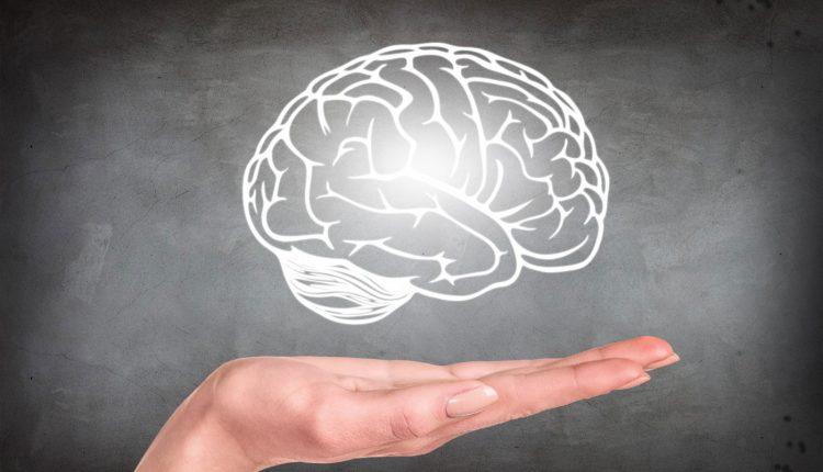 تعزيز وظائف الدماغ